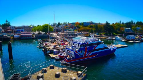 Anacortes to Friday Harbor-72