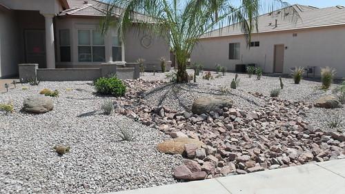 redesigned front yard landscape