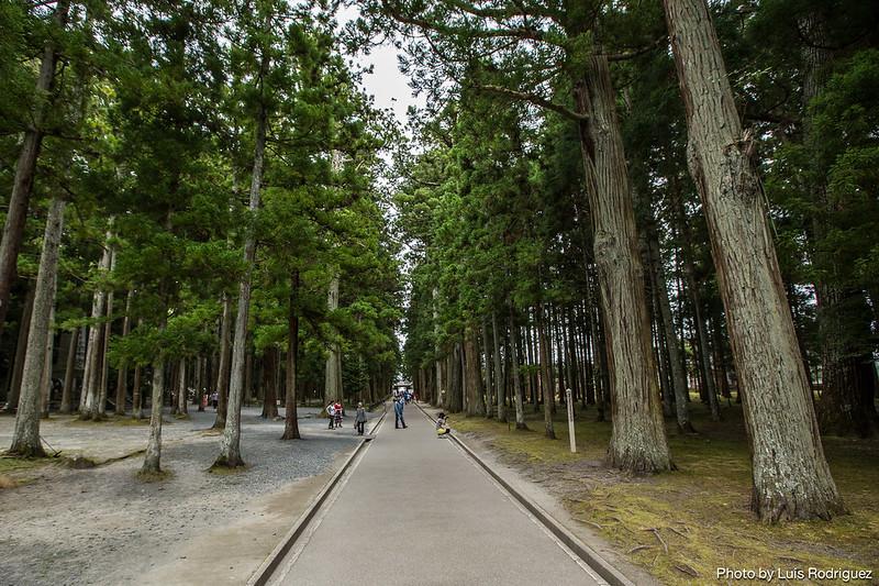 Matsushima-88