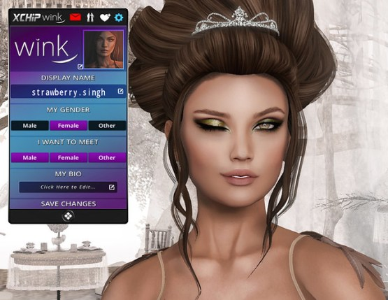 Wink xChip App in Second Life