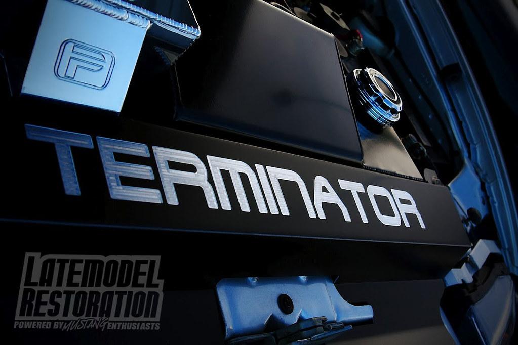Custom 0304 Cobra Terminator Radiator Cover at Mustang We