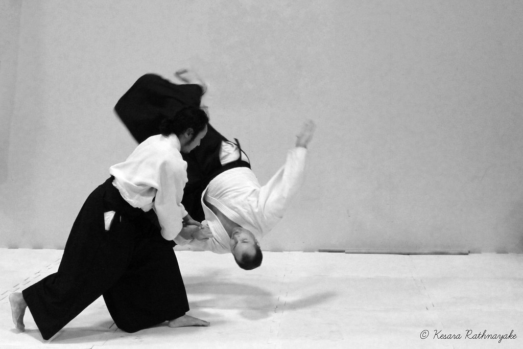 3d Action Wallpaper Hd Img 0022 20130224 Quot Aikido Quot Performed By Aikido