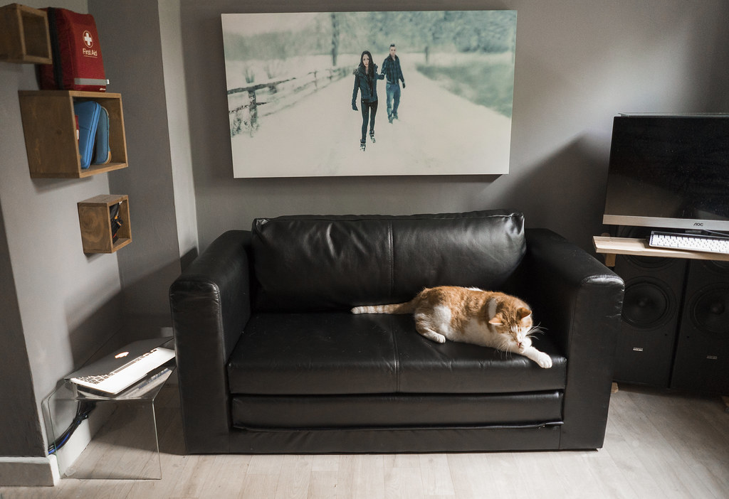 Ikea Askeby sofa bed  Review below  This is an early