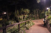 Tropical Gardens at night, Alum Chine, Westbourne ...