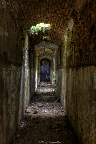 Haunted House 3d Wallpaper Haunted Hall Caldwell House The Passage Way Corridor