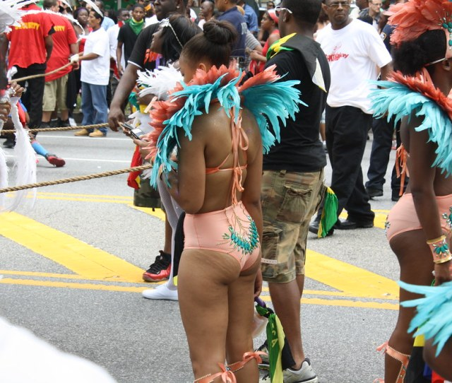 West Indian Day Parade By Chuck Diesel