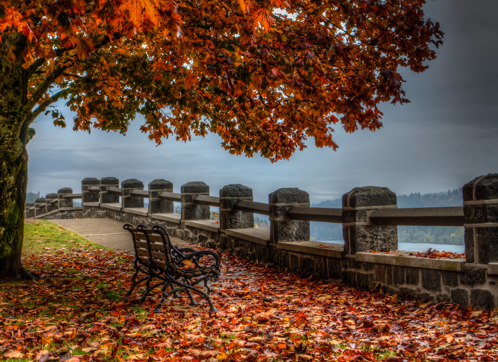 Free Fall Wallpapers Desktop Autumn Bench I Took This Today Near My House It Looks