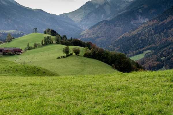 hilly landscape hinterthiersee