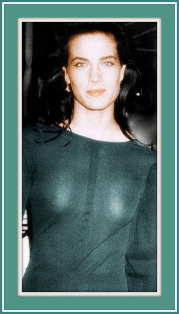 Theresa Lee Terry Farrell  born November 19 1963 is
