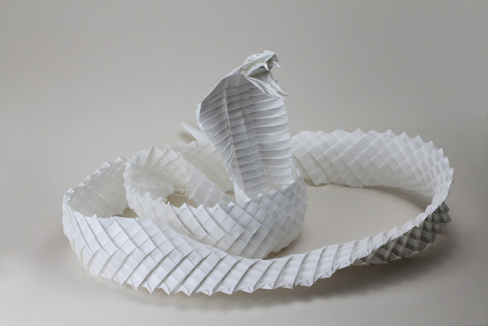 King Cobra Diagram By Ronald Koh Folded By Me