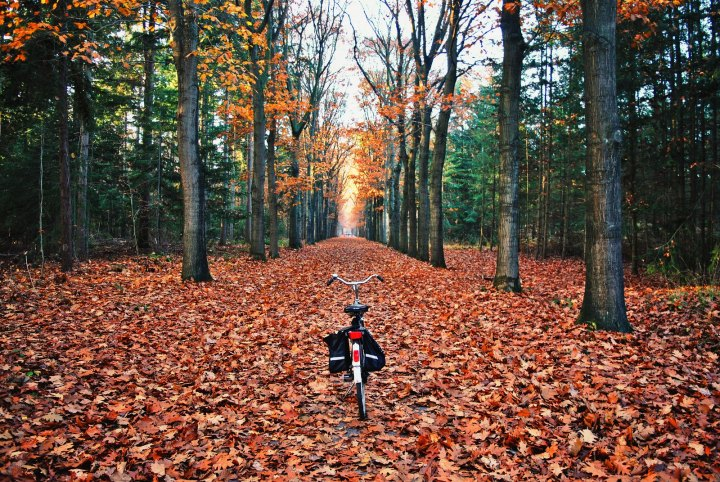 Autumn bicycle rides are the best!