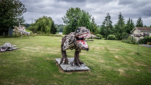 Driftwood Dinosaurs-005