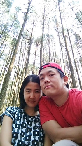 Us and Pine Tree