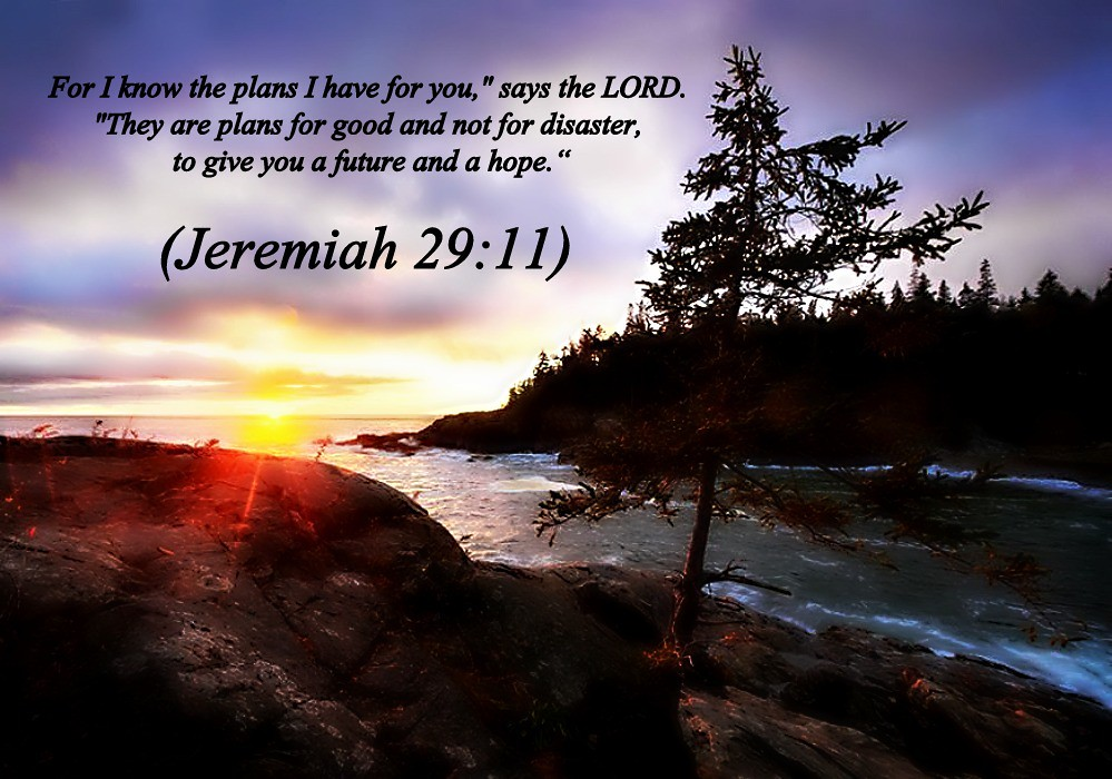 Jeremiah 2911 Nlt 11 24 14 Todays Bible Scripture