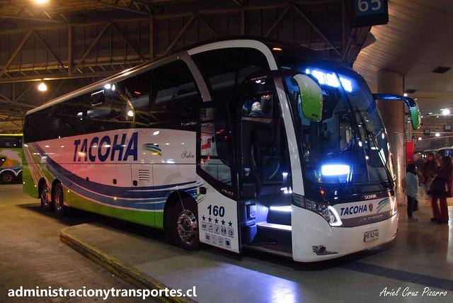 Buses Tacoha | Santiago (Terminal San Borja) | Neobus New Road N10 380 - Scania / HRXJ46 - 160 Vanidosa