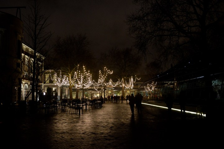 Christmas at Artis Zoo