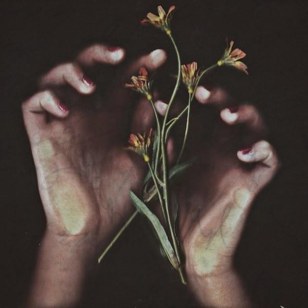 Delicate Hand Holding Flower