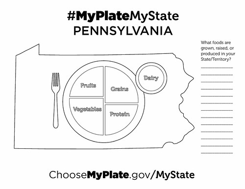Usda Myplate Coloring Sheet Pages Sketch Coloring Page
