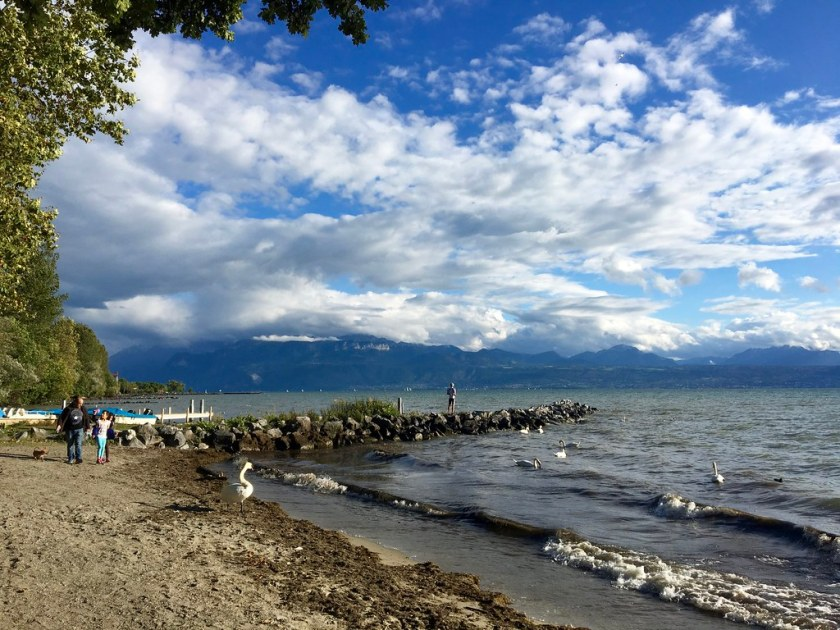 Octobre 2016 au bord du lac