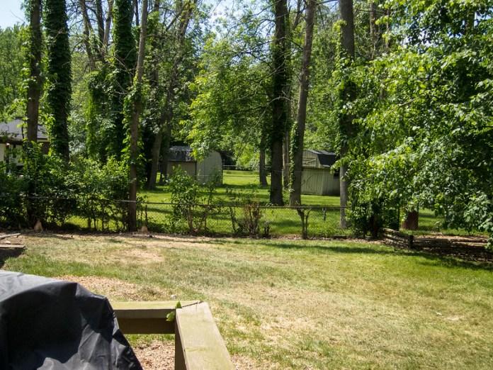 Empty back yard