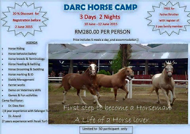 Horseriding Camp