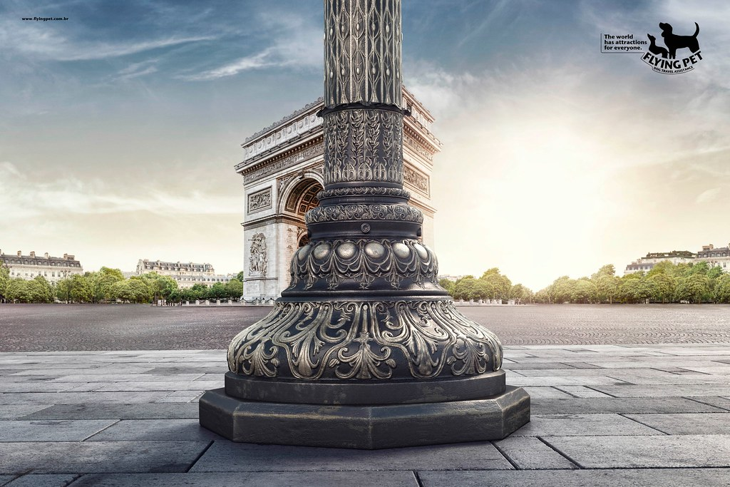 Flying Pet - Paris