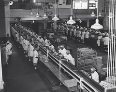 Maryland Tuna Plant: 1955 ca. #1