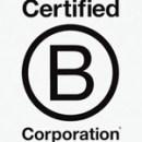 bcorp_logo-250x223