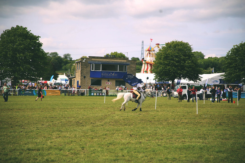 Horse at the Royal Bath and West Show