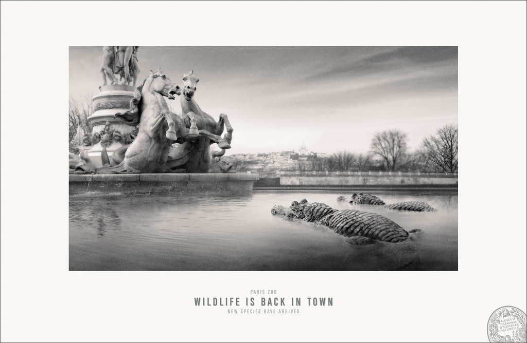 Paris Zoo- Opera