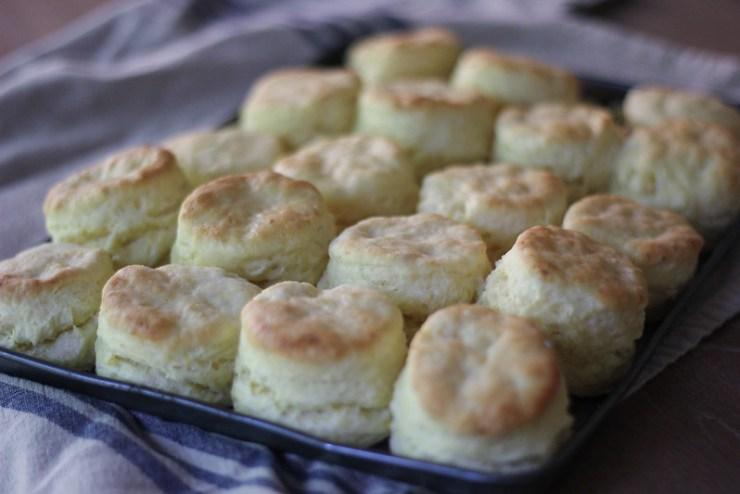 Corn Milk Biscuits 8 (1 of 1)