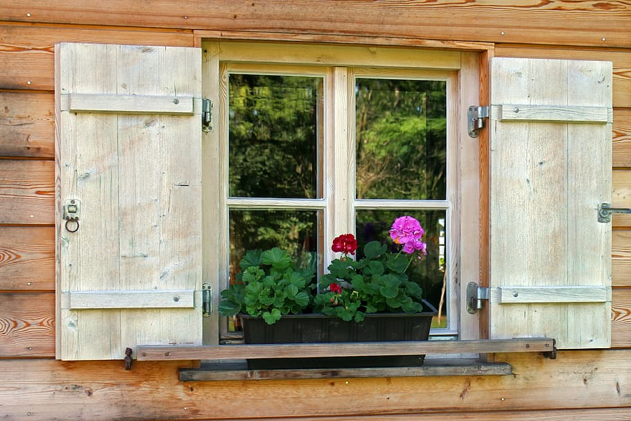 How to Plant a Window Flower Box