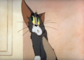 Tom And Jerry Episode Puss N' Toots