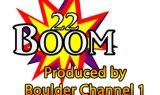 22 Boom Breaker