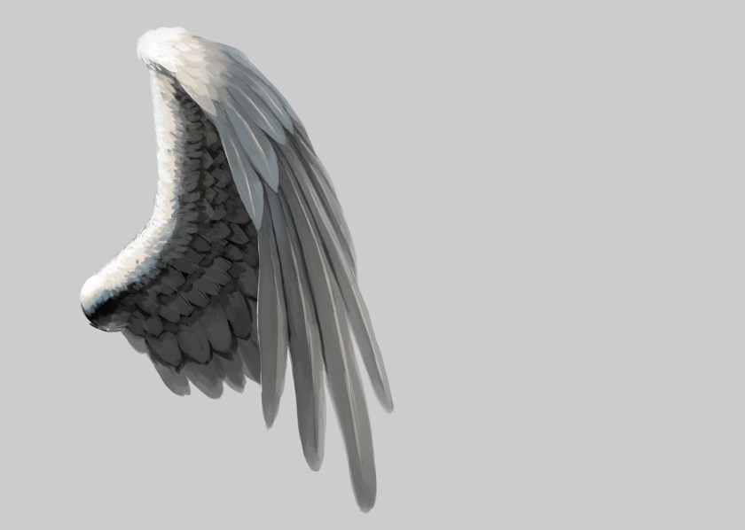 翼の実践検証2