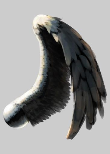 なんとなく描いた翼