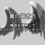 翼の描き方/構造を理解してイラストのリアリティを上げよう