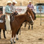 Brown Horse And Men S Cowboy Suit Free Image Peakpx