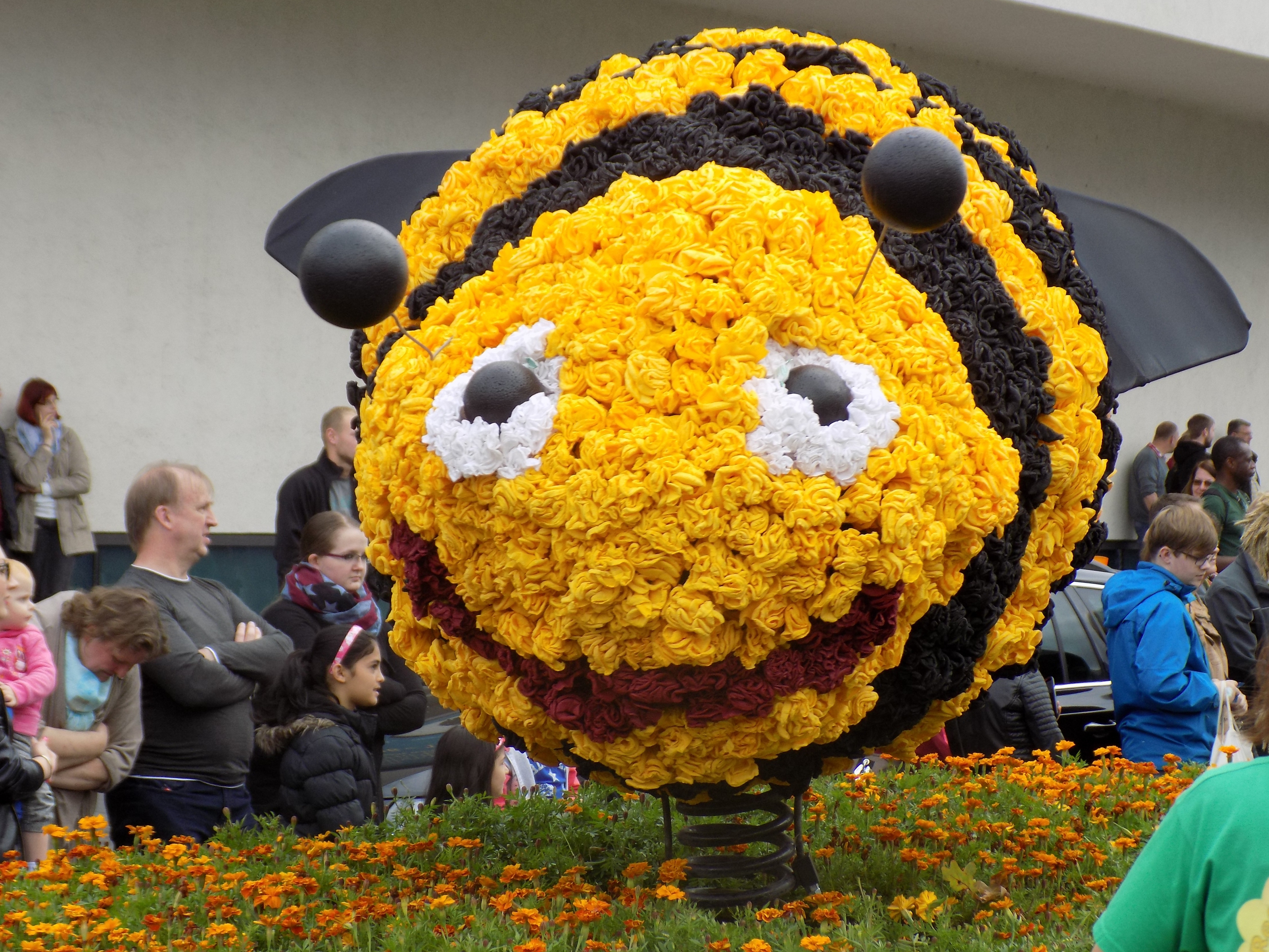 All Cute Flower Wallpaper Yellow And Black Bee Flower Float Free Image Peakpx