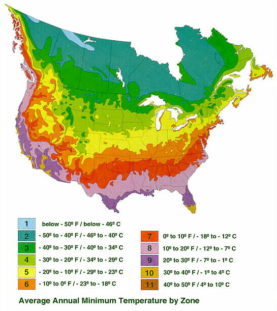 Zoning in on Hardiness   Proven Winners