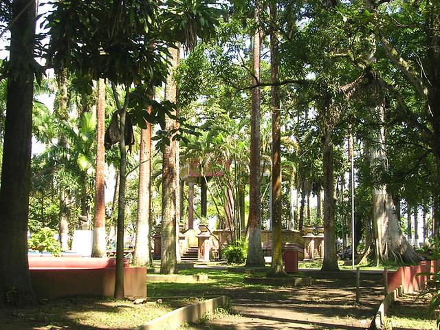 Limon  Parque Vargas  Parque Vargas a tropical