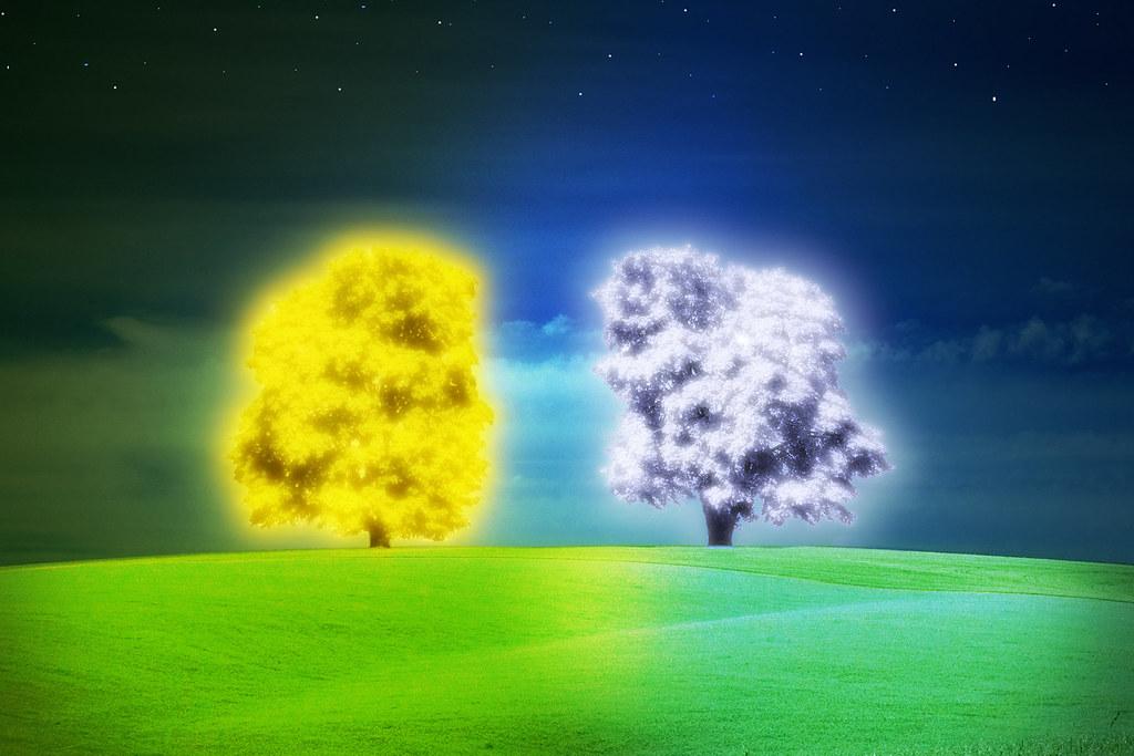 The Two Trees of Valinor  preliminary digital sketch I sh  Flickr