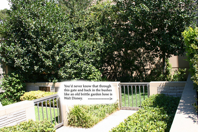 Walt Disneys Hidden Grave  Of course the rumor is that