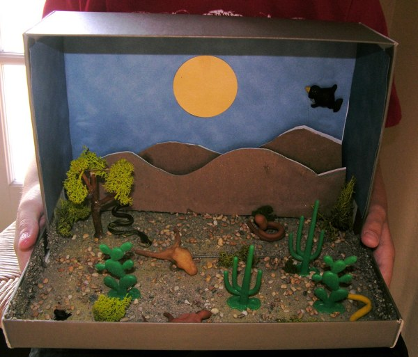 Biome Shoebox Project Ecosystem Shoe Box Http - Year of