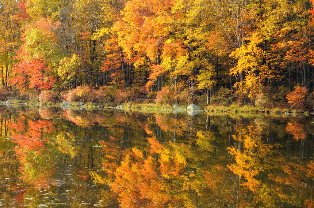 New England Fall Foliage Wallpaper Silver Mine Lake Foliage This Was The View With Morning