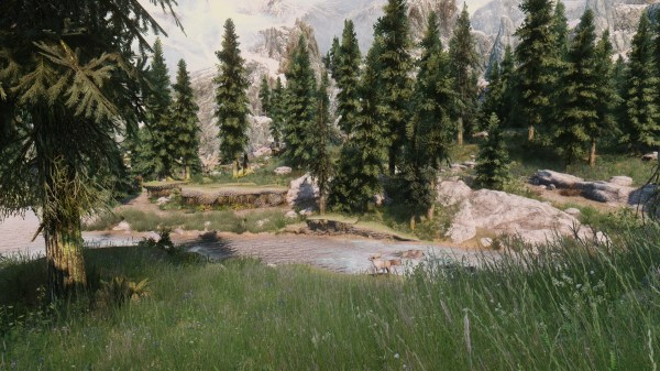 Skyrim 32 Bits And 64 Satirical Comparison - Year of Clean Water