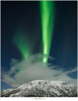 aurora borealis lofoten fjorden