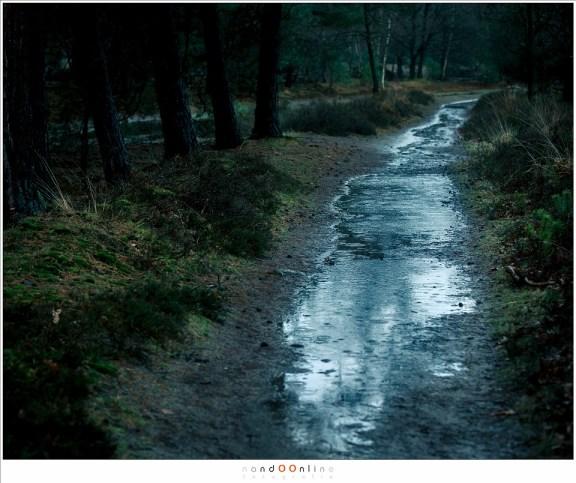 De paden zijn beken geworden, vol regenwater dat continu bijgevuld wordt
