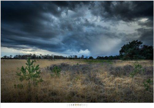 Met deze lucht is het niet moeilijk om in te schatten dat het gaat regenen. Tijd genoeg om te zorgen dat alles beschermd is tegen de regen. En wie weet, misschien waait het langs je heen en blijft het droog.
