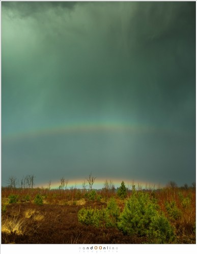 Laag aan de horizon verschijnt een regenboog, onder wolken die onophoudelijk hun water over de wereld uitstrooien.